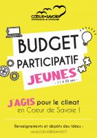 Budget participatif descriptif